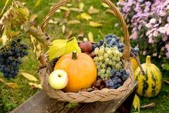 Herbstkorb Lizenzfreie Stockfotografie