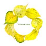 Herbstkranzrahmen mit gelbem Herbstlaub watercolor Stock Abbildung
