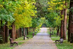 """Herbstlandschaft-†""""setzt auf einem schönen Herbstgehweg in PA auf die Bank Stockfotos"""
