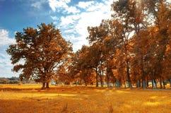 Herbstlandschaft. Lizenzfreie Stockfotos