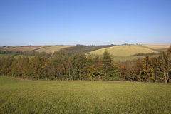 Herbstlandschaft 2 Stockfotografie