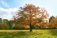 Herbstlandschaft stockfoto