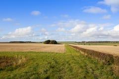 Herbstlandschaft auf den Yorkshire-Wolds Lizenzfreie Stockfotos