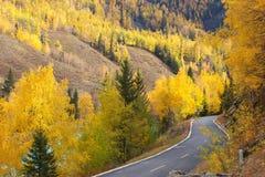 Herbstlandschaft auf Straßenrand Stockfotografie