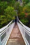 Herbstlandschaft, bunte Bäume, Morgen in Fluss achtern Lizenzfreie Stockbilder