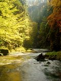 Herbstlandschaft, bunte Blätter auf Bäumen, Morgen in Fluss nach regnerischer Nacht Bunte Blätter Lizenzfreie Stockbilder