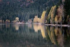 Herbstlandschaft in den Bergen Feld des grünen Grases gegen einen blauen Himmel mit wispy weißen Wolken Stockfotos