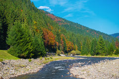 Herbstlandschaft in den Karpatenbergen Stockfotografie