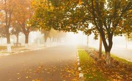 Herbstlandschaft in der Kleinstadt Nebelige Herbstmorgenstraße stockbild