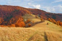 Herbstlandschaft in der Landschaft Stockfoto