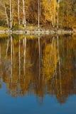 Herbstlandschaft der Süd-Urals Stockfotos