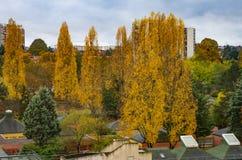 Herbstlandschaft in der Stadt lizenzfreies stockbild