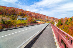 Herbstlandschaft des Bandai Azuma Skyline Lizenzfreie Stockbilder