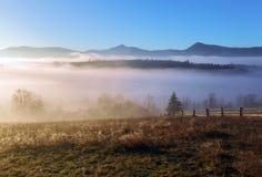 Herbstlandschaft des Hochgebirges, orangefarbene Bäume, Nebel Sun-Strahlen erleuchten den Rasen mit trockenem Gras Blauer Himmel stockfotos