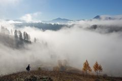 Herbstlandschaft des Hochgebirges, orangefarbene Bäume, Nebel Sun-Strahlen erleuchten den Rasen mit trockenem Gras Blauer Himmel stockbild