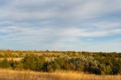 Herbstlandschaft des Holzes Stockfoto