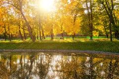 Herbstlandschaft des sonnigen Herbstparks beleuchtete durch Sonnenscheinherbstpark mit Herbstbäumen und Teich im weichen Licht Lizenzfreies Stockfoto