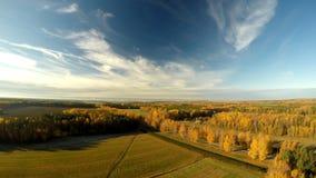Herbstlandschaft des Waldes Russland Schattenbild des kauernden Geschäftsmannes Stockbild