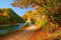 Herbstlandschaft durch die Dunajec-Fluss-Schlucht. Stockbilder