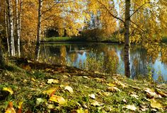 Herbstlandschaft, Fluss lizenzfreie stockfotografie