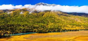 Herbstlandschaft, Kanas Xinjiang China Lizenzfreie Stockfotos