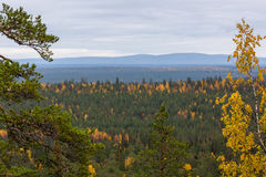 Herbstlandschaft in Lappland, Finnland Stockbilder