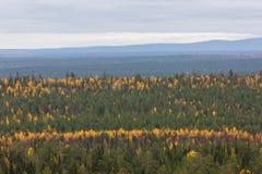Herbstlandschaft in Lappland, Finnland Lizenzfreie Stockfotos