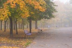 Herbstlandschaft mit Bänke lizenzfreies stockbild