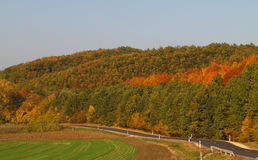 Herbstlandschaft mit curvy leerer Straße stockfotos