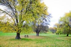 Herbstlandschaft mit einer Tabelle Lizenzfreie Stockbilder