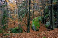 Herbstlandschaft mit Felsen im Wald Lizenzfreies Stockfoto