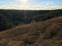 Herbstlandschaft mit gelbem Gras und grünen Bäumen Lizenzfreie Stockfotos