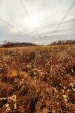 Herbstlandschaft mit hohen Metalltürmen der elektrischen Hochspannungslinie am bewölkten Tag stockbilder