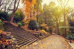 Herbstlandschaft mit langem Treppenhaus und Fußweg Stockbilder