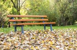 Herbstlandschaft mit Parkbank Stockbild