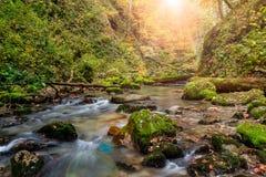 Herbstlandschaft mit schönem Nebenfluss Stockfoto