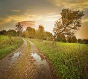 Herbstlandschaft mit Schotterweg Stockfotos