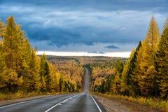 Herbstlandschaft mit Straße Lizenzfreies Stockfoto