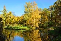Herbstlandschaft mit Teich in Pushkin, Stockbilder