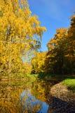 Herbstlandschaft mit Teich in Pushkin, Lizenzfreie Stockbilder
