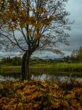Herbstlandschaft in Mittel-Russland Lizenzfreies Stockbild