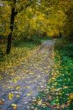 Herbstlandschaft in Mittel-Russland Stockfotografie
