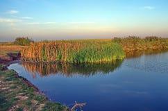 Herbstlandschaft um den Teich Stockfotografie