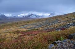 Herbstlandschaft von Altai Sonnenuntergang in der Steppe, schöner Abendhimmel mit Wolken, Plato Ukok, niemand herum, Altai, Sibir Lizenzfreie Stockbilder