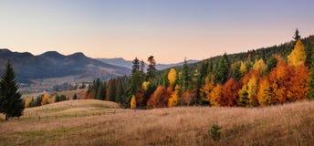 Herbstlandschaft von Forest Hills und von Bergen auf Sonnenuntergang clear lizenzfreie stockfotografie