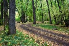 Herbstlandschaft von Nordutah Lizenzfreie Stockbilder