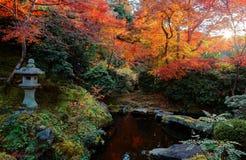 Herbstlandschaft von schönen Ahornbäumen in einem ruhigen Ambiente mit einer traditionellen Steinlaterne Stockfotografie