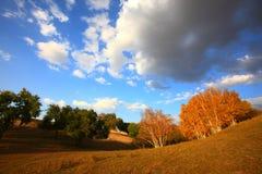 Herbstlandschaften Stockfoto