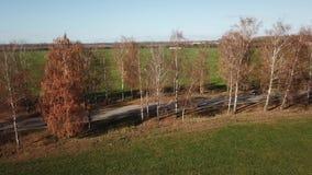 Herbstlandschaftsvogelperspektive stock footage