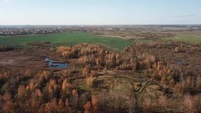 Herbstlandschaftsvogelperspektive stock video footage